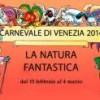 carnevale venezia 2014 museo merletto